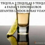 6 tequilas