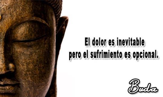 El dolor es inevitable, pero el sufrimiento es opcional (Buda)