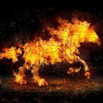 Caballo de Fuego (por Salhy)