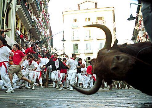 san fermin toro posando para la foto
