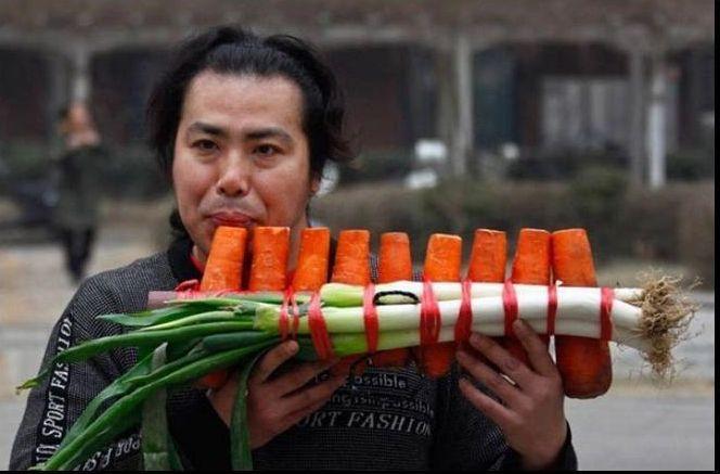 instrumento hecho con vegetales zanahoria y puerros
