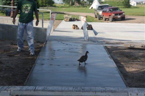 ¡Listo! Ahora a casa mientras el cemento seca... oh wait!