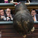 ¿Queréis toros? Pues tomad toros