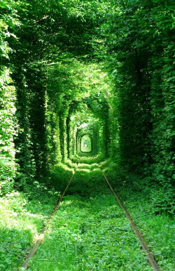 Túnel del Amor (Ucrania)