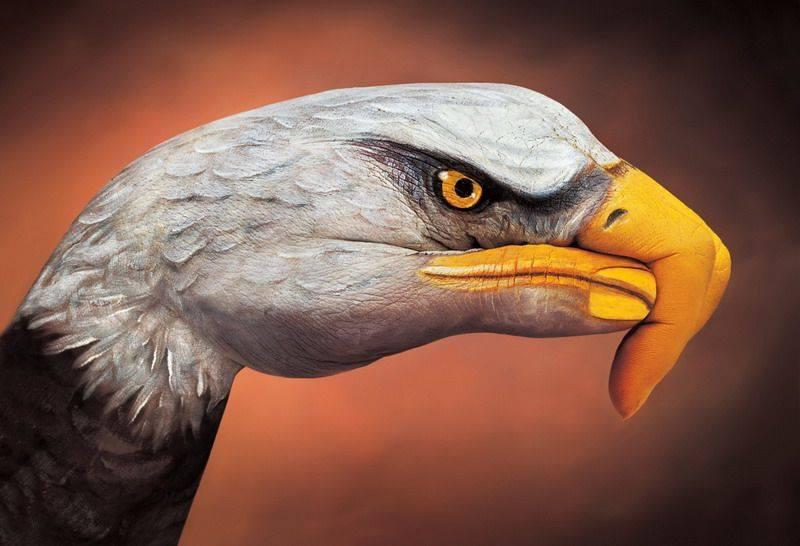 Body painting - Águila dibujada en mano