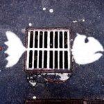 Arte Urbano – Pez alcantarilla