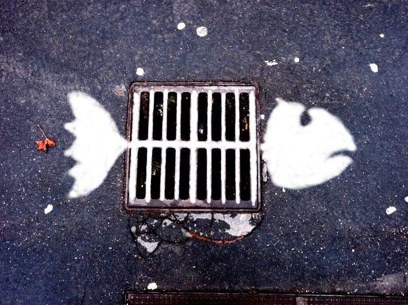 arte urbano pez alcantarilla