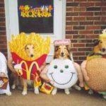 Perros disfrazados – McDonalds