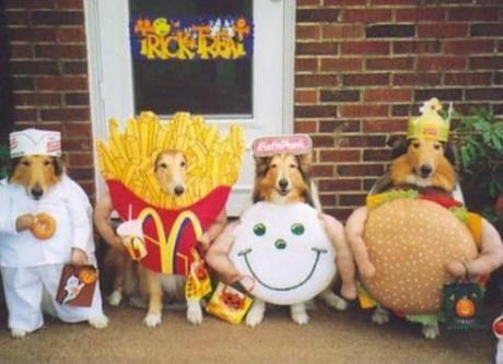 perros disfrazados mcdonalds