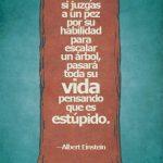 Todos somos genios, pero si juzgas a un pez por su habilidad para escalar un árbol, pasará toda su vida pensando que es estúpido (Albert Einstein)