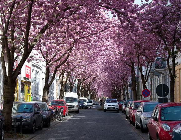 Una calle muy romántica
