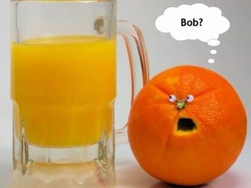 naranja zumo bob