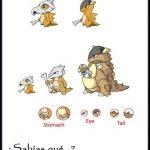 Mundo Pokemon: Donde las especulaciones nunca acaban