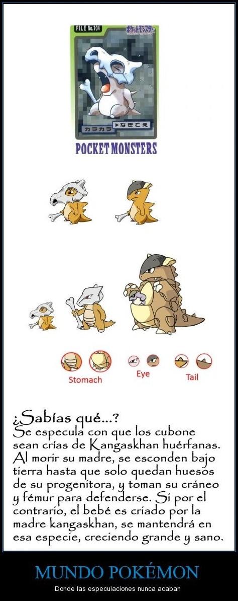 sabias que se especula con que los cubone sean crias de kangaskhan huerfanas mundo pokemon donde las especulaciones nunca acaban