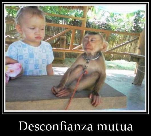niña y mono desconfianza mutua