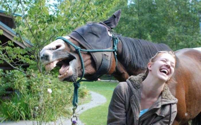 caballo y chica riendose