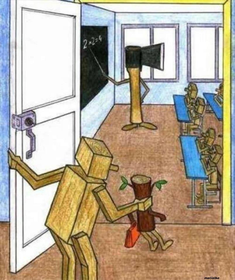 La educación en la actualidad. Representación gráfica