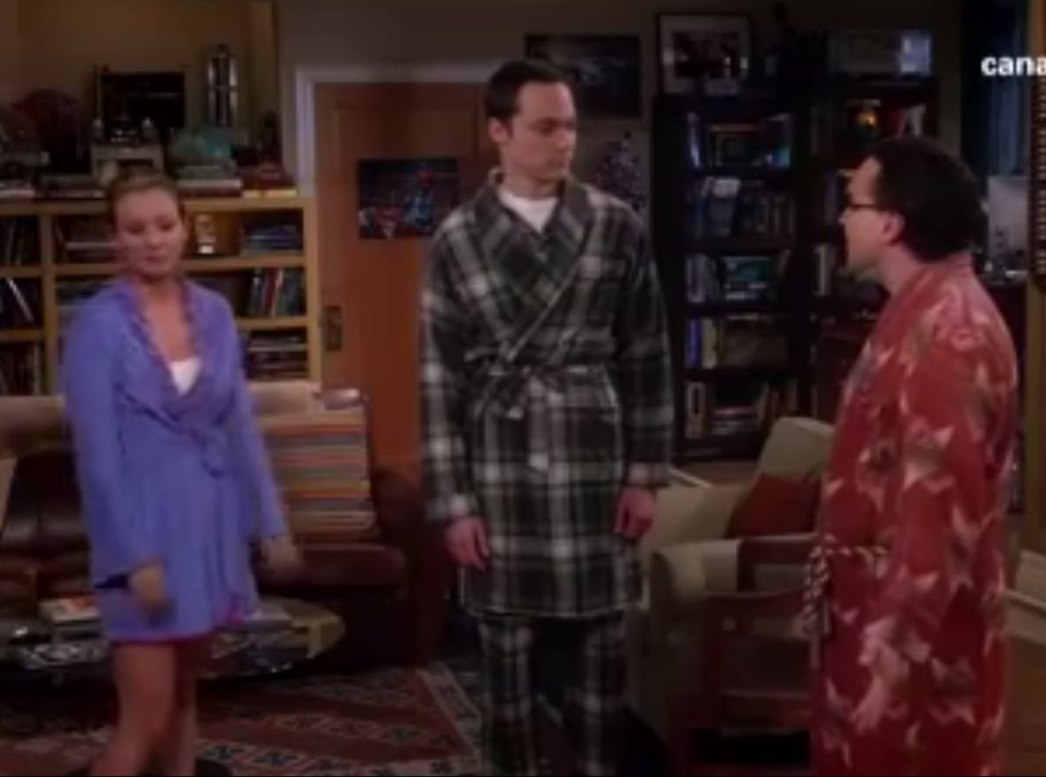 big bang theory sheldon cooper besa a penny