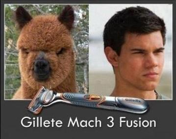 Gilette Match 3 fusión - Antes y después