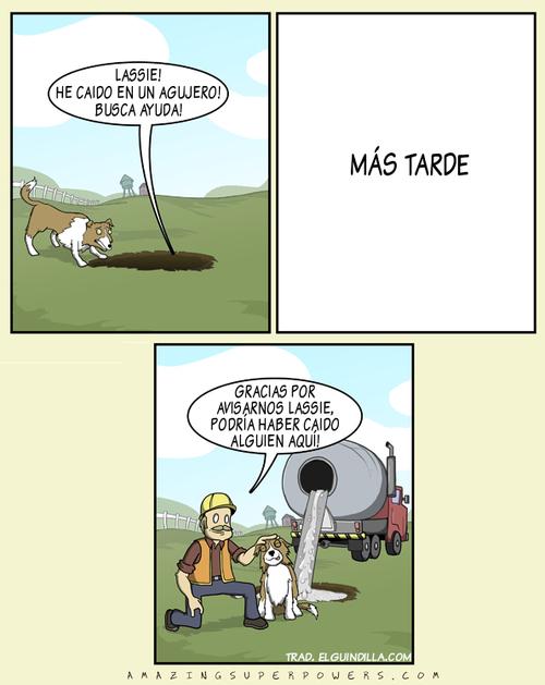 lassie he caido en un agujero busca ayuda