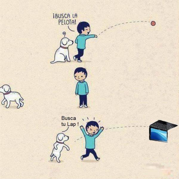 niño jugando con perro busca la pelota busca tu lap