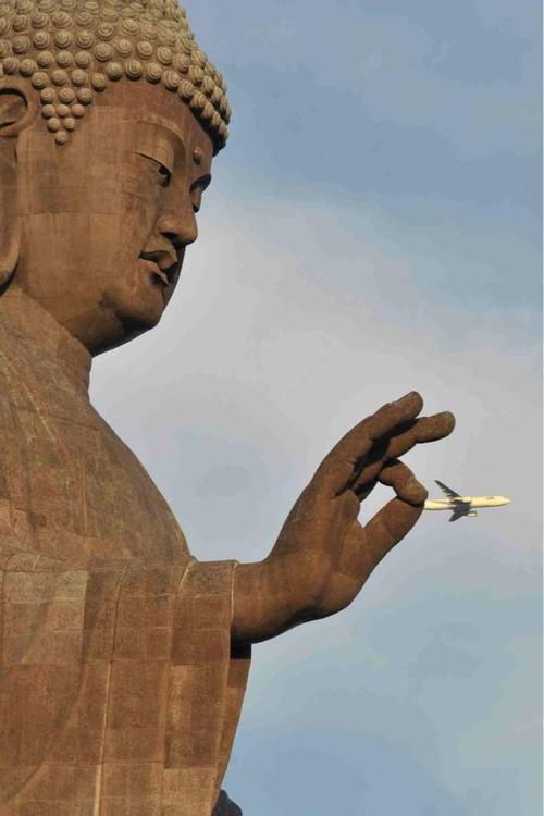 Perfect Timing - Buda atrapa avión de pasajeros