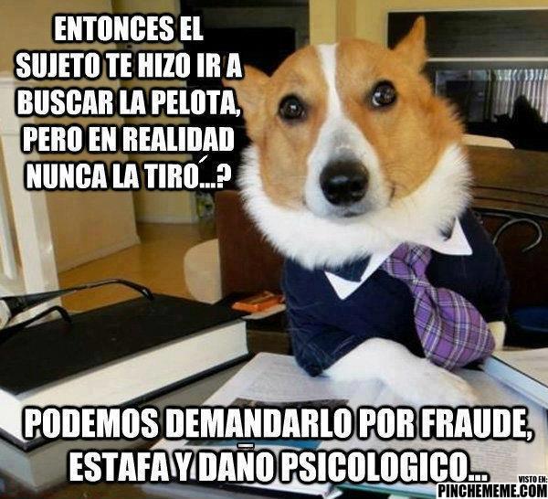 Si hubiese perros abogados...