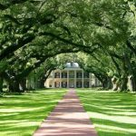 Túnel de árboles (Oak Alley Plantation, USA)