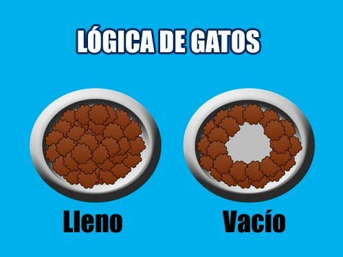 logica de gatos plato lleno y vacio