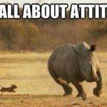 Lo que cuenta es la actitud