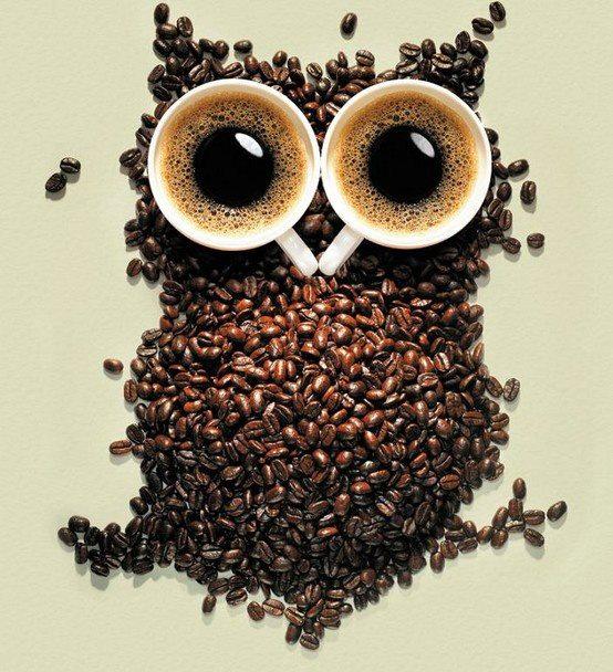 arte con comida buho de cafe