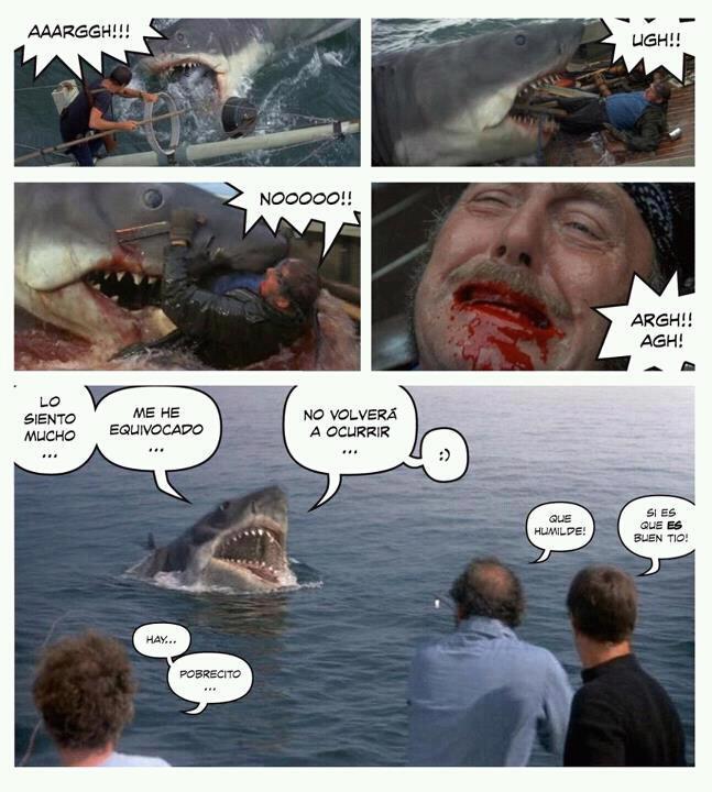 tiburon arrepentido