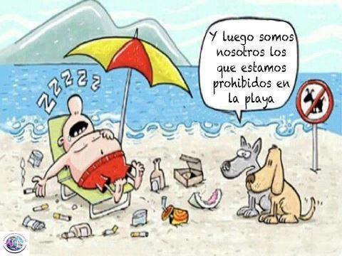 perros y luego somos nosotros los que estamos prohibidos en la playa
