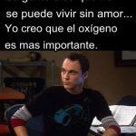 ¿Se puede vivir sin amor? (por Sheldon Cooper)