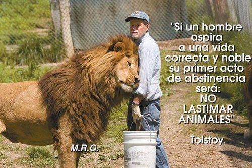 si un hombre aspira a una vida correcta y noble, su primer acto de abstinencia no lastimar animales