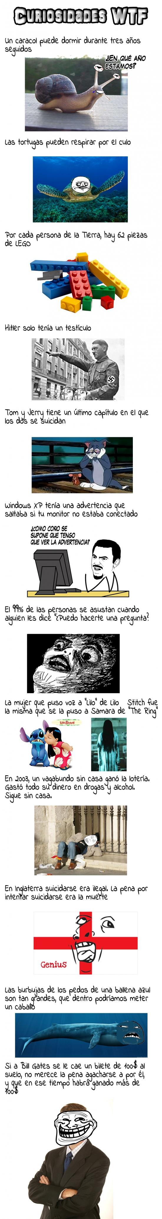 memes-curiosidades-wtf