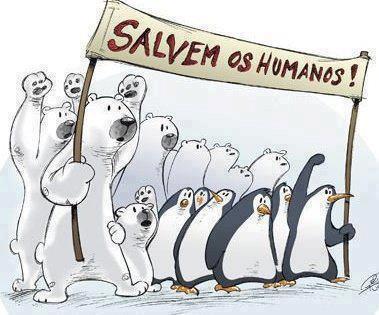 Animales solidarios