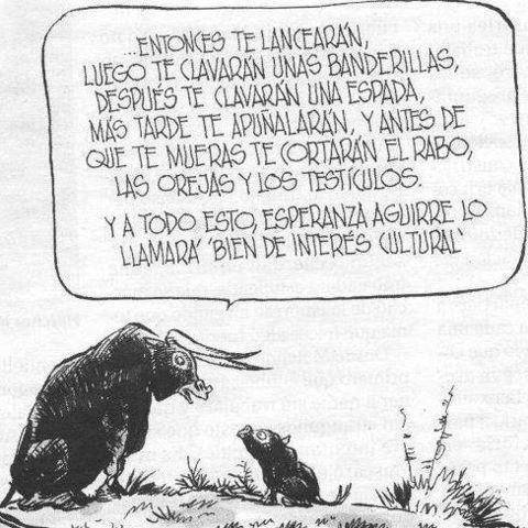 De toro a toro