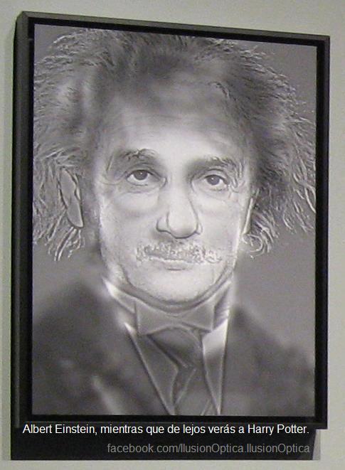¿Albert Einstein o Harry Potter?