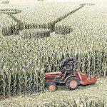 Explicación a los dibujos en las cosechas