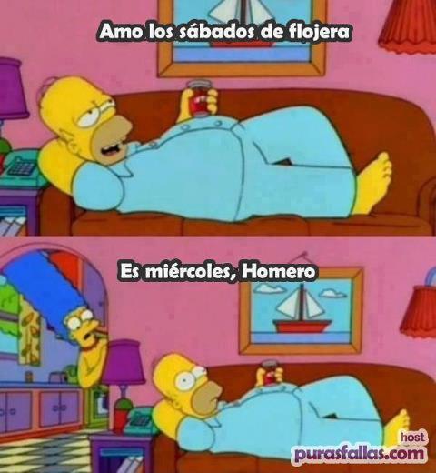 Homer un día cualquiera