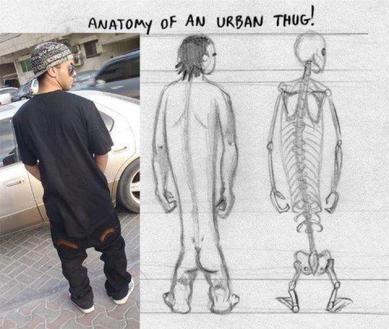 Anatomía de un rapero