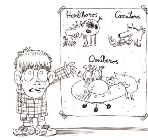Diferencia entre herbívoros, carnívosos y ovnívoros