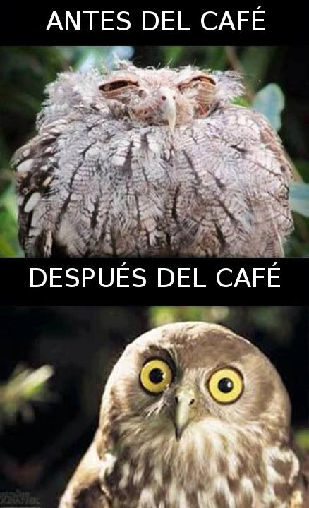 antes del cafe - despues del cafe