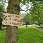 Un poco de solidaridad con los árboles que pasan por una mala situación