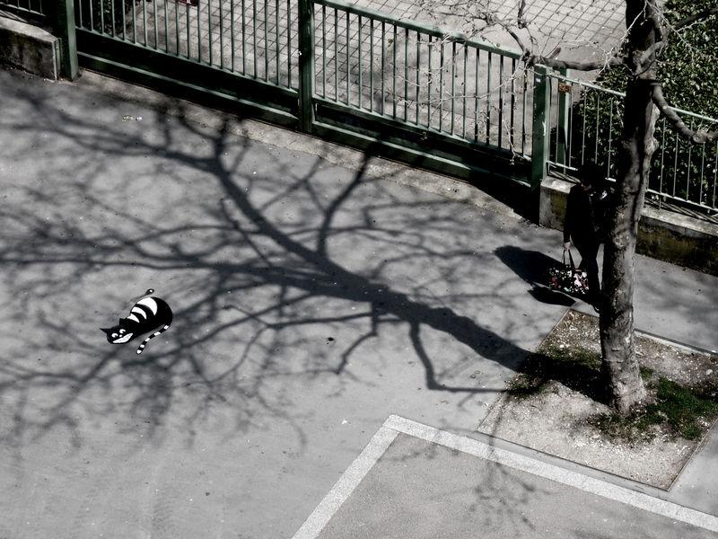 arte urbano - gato 'subido' a la sombra del arbol