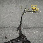 Arte urbano: Búhos en árbol
