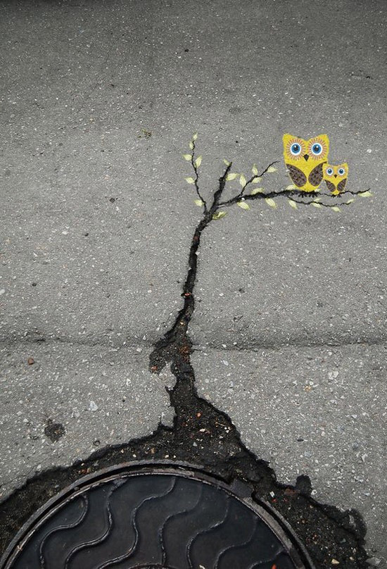 arte urbano grieta arbol buhos