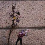 Arte urbano: leñador y planta