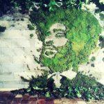 Arte urbano: rostro con musgo